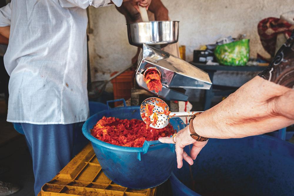 apulia tomato sauce